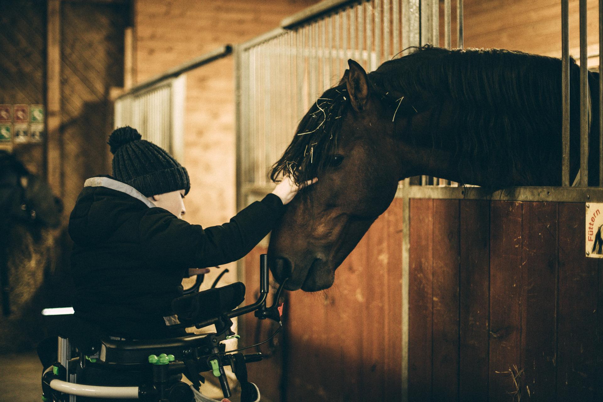 Raoul con Grillo al maneggio accarezza un cavallo