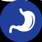 Icona stomaco blu